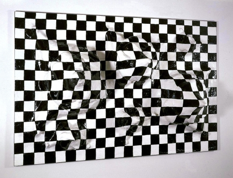 checkerboard illusion sculpture by liz craft