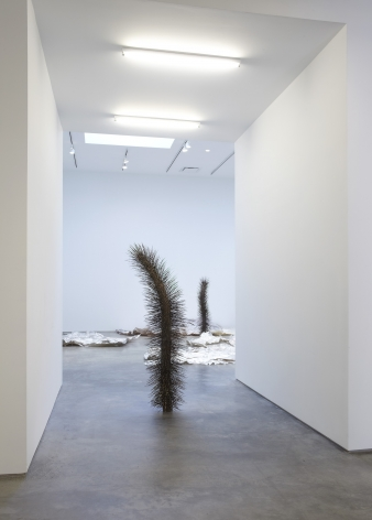 Intimate Life(Installation View), Marianne Boesky Gallery, 2010