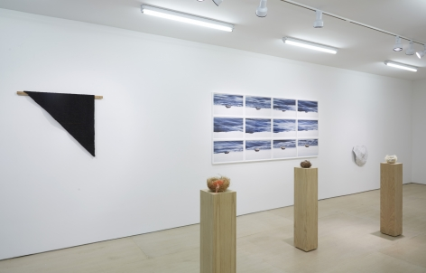 Ordering Nature (Installation View), 20 Clinton Street, 2015