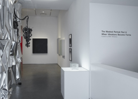 A Masked Portrait Part II: When Vibrations Become Forms (Installation View), Marianne Boesky Gallery, 2011