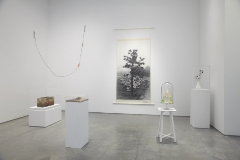 The Nature of Disappearance: Part I (Installation view), Marianne Boesky Gallery, 2012