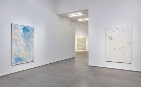 whatever, a vibrant holiday (Installation View), Boesky Gallery, 2016