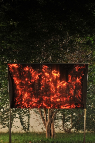 a photograph of a tree and fire by thiago rocha pitta