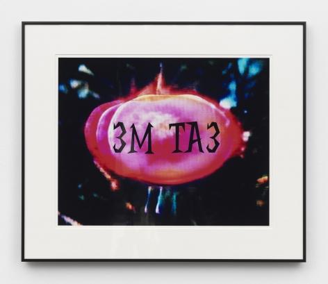 Eat Me, 2006, C-print