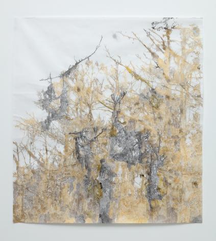 Anne Allen, Golden Cypress, 2013
