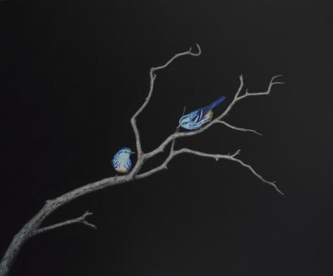 Isabelle du Toit, Blue Black and White Warblers, 2020