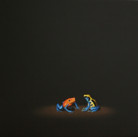 Isabelle du Toit, Poison Darts, 2012