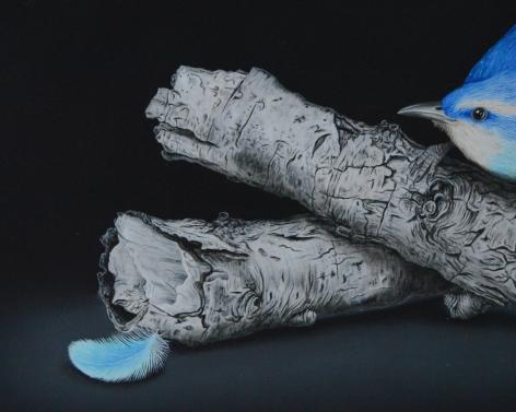 Isabelle du Toit, Blue Carolina Wren (detail), 2020