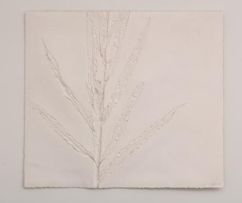 Harry Geffert (1934-2017), Large Corn (Negative), 2005