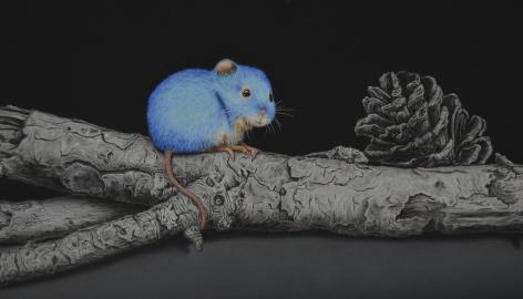 Isabelle du Toit, Blue Wood Mouse (detail), 2020