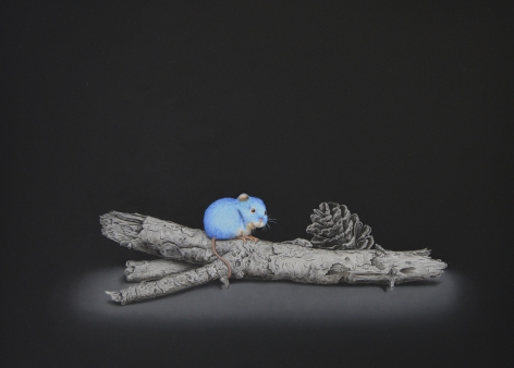 Isabelle du Toit, Blue Wood Mouse, 2020