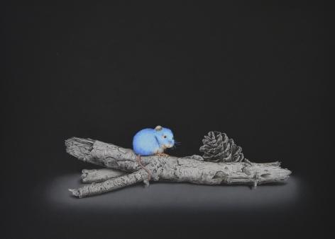 Isabelle du Toit, Blue Wood Mouse, 2020