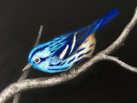 Isabelle du Toit, Blue Black and White Warblers(detail), 2020