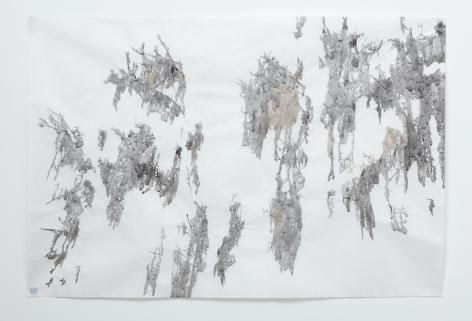 Anne Allen, Big Cypress III, Caddo, 2014