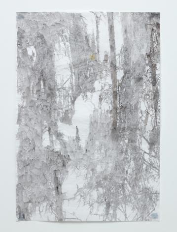 Anne Allen, Big Cypress IB, 2013