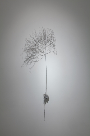 Harry Geffert (1934-2017), Dandelion, 2002