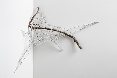 Sherry Owens, Star Web, 2019