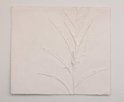 Harry Geffert (1934-2017), Large Corn (Positive), 2005