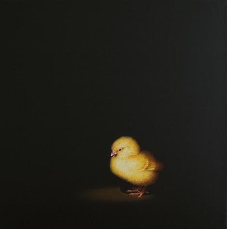 Isabelle du Toit, Chick I, 2011