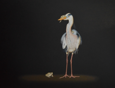 Isabelle du Toit, Heron and Toads, 2017