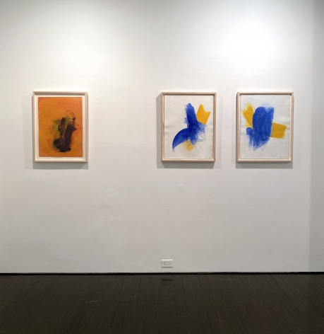 Cleve Gray: Paintings on Paper