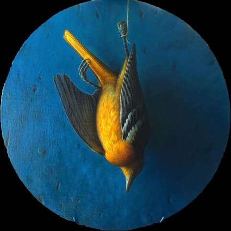 wade schuman, Bird, 2014-15, oil on linen on panel, 19 inches diameter