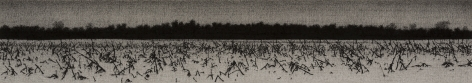 anthony mitri, Corn, Effect of Snow 2, Bundysburg, 2013, charcoal and pastel on paper, 3 7/16 x 19 3/8 inches