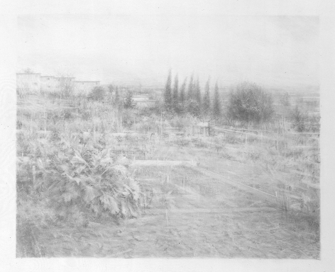 Robert Bauer, Centinela III, 2004, graphite on gessoed paper, 15 x 18 1/4 inches