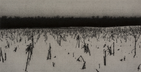anthony mitri, Corn, Effect of Snow, Bundysburg, 2013, charcoal and pastel on paper, 10 x 19 3/8 inches