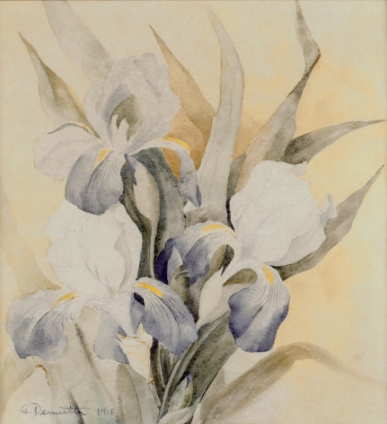 charles demuth, Iris, 1918 watercolor on paper 8 3/4 x 8 1/8 inches