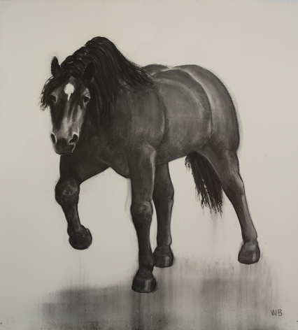William Beckman, Charging Horse, 2017, charcoal on paper, 109 x 87 inches
