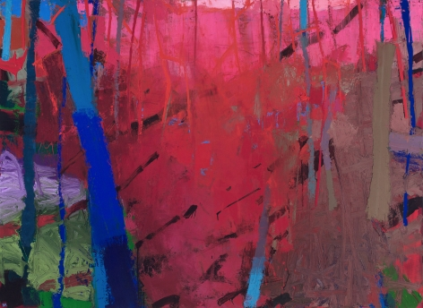 Brian Rutenberg, Sandspur, 2017, oil on linen, 60 x 82 inches