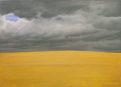 william beckman, Dakota Wheat, 2014, pastel on paper, 24 x 32 1/4 inches