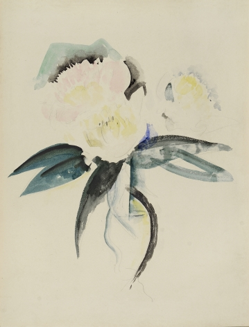 charles demuth, Flowers, c.1928-1932 watercolor and pencil on paper 13 3/8 x 10 1/8 inches