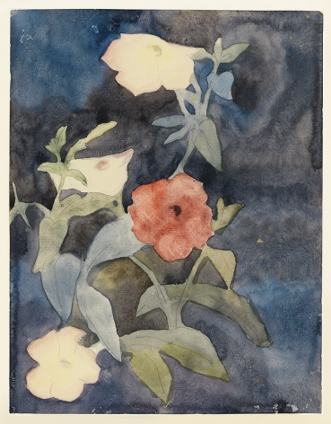 charles demuth, Flowers, c.1915 watercolor on paper 10 7/8 x 8 3/8 inches