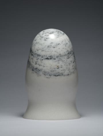 Zhao Zhao Control 12,2019