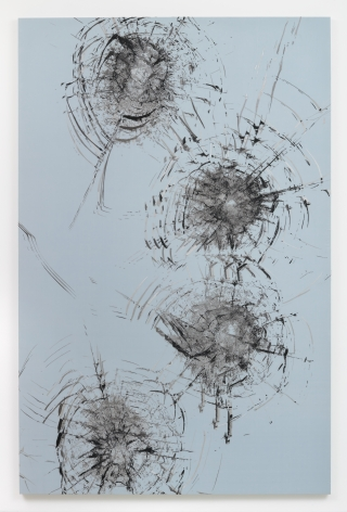 Zhao Zhao Constellation 5,2019