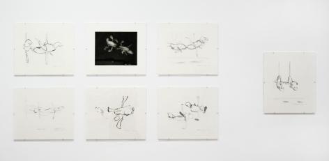 Bruce Nauman: Prints