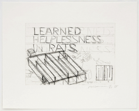 Learned Helplessness in Rats, 1988