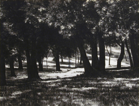 April Gornik, Shadow Light, 2002