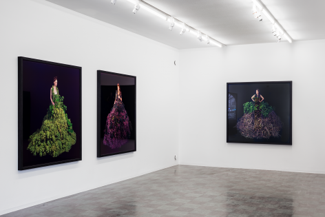Installation Shot, Mother Earth, 2018