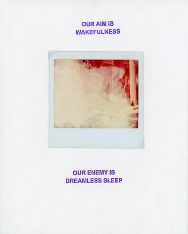 GENESIS BREYER P-ORRIDGE Our Aim in Wakefulness/ Our Enemy is Dreamless Sleep, 2018