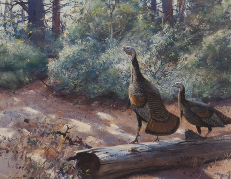 """Sold painting by Aiden Lassell Ripley entitled """"Gobblers""""."""
