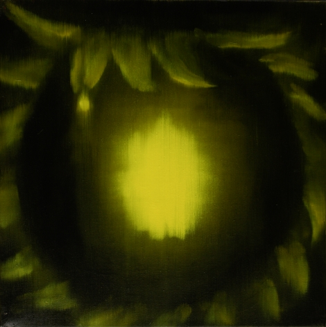 Ross Bleckner Untitled, 2009 Oil on canvas