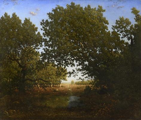 THEODORE ROUSSEAU  French, 1812-1867  Chêne penché sur une mare au Bas-Breau, forêt de Fontainebleau  Circa 1860