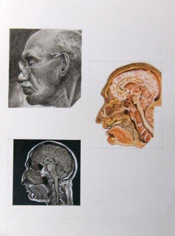 Debanjan Roy UNTITLED 4 2009 Acrylic on paper 14 x 11 in.