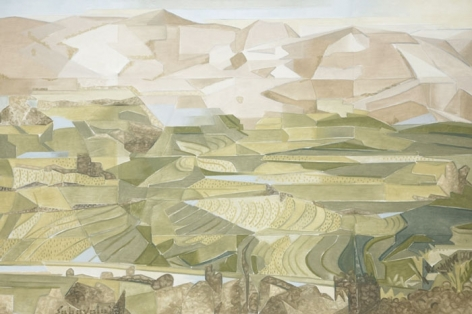 RICE FIELDS, PALNI HILLS 2008 Oil paint on canvas 40 x 60 in.