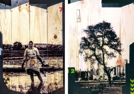 Arunkumar H.G. Vulnerable Guardians Series (Pair 6) 2018 Digital print, floor paint and clear coat on reclaimed wood 20 x 14 in. (Each)