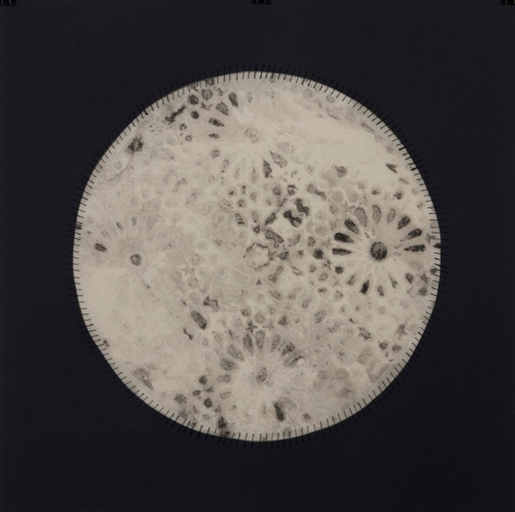 Anila Quayyum Agha Regeneration VI 2012 Mixed media on paper (Encaustic, ink, graphite, charcoal, and embroidery on paper) 22 x 22 in.  Inquire
