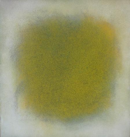 Natvar Bhavsar SARANGAA 2009 Oil on canvas 42 x 40 in.